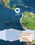 Tiểu luận: Mỹ La tinh– thị trường xuất khẩu chủ lực của Việt Nam