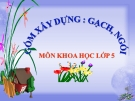 Slide bài Gốm xây dựng gạch, ngói - Khoa học 5 - GV.B.N.Kha