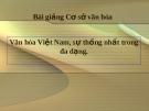 Bài giảng Cơ sở văn hóa Việt Nam: Văn hóa Việt Nam, sự thống nhất trong đa dạng
