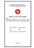 Khóa luận tốt nghiệp: Hoạt động marketing đa cấp tại công ty TNHH Noni Vina - thực trạng và giải pháp phát triển