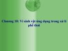 Bài giảng Vi sinh vật ứng dụng trong xử lý phế thải (chương 10)
