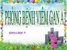 Bài 15: Phòng bệnh viêm gan A - Bài giảng điện tử Khoa học 5 - T.B.Minh