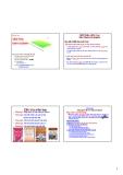 Bài giảng Văn hóa kinh doanh: Chương 1 - PGS.TS. Dương Thị Liễu