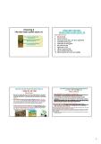 Bài giảng Văn hóa kinh doanh: Chương 4 - PGS.TS. Dương Thị Liễu