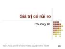 Bài giảng Tài chính phái sinh: Chương 18 - Giá trị có rủi ro