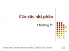 Bài giảng Tài chính phái sinh: Chương 11 - Cây nhị phân
