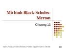 Bài giảng Tài chính phái sinh: Chương 13 - Mô hình Black-Scholes-Merton