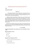 Đề  kiểm tra giữa học kì 2 môn Tiếng Việt lớp 4 năm 2014 – Đề 2