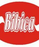 Bài tiểu luận: Phân tích tình hình kinh doanh của Công ty CP bánh kẹo Biên Hòa Bibica trong ba năm (2010-2012)