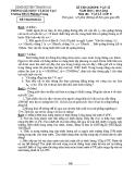 Đề thi Violimpic Vật lý 8 (2013 - 2014) Trường THCS Phương Trung - (Kèm Đ.án)