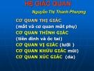 Bài giảng Hệ giác quan - Nguyễn Thị Thanh Phượng