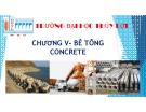 Bài giảng Vật liệu xây dựng: Chương V