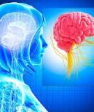 Bảy cách giúp cải thiện trí nhớ hiệu quả