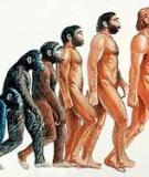 Tiểu luận: Vấn đề con người, nguồn lực con người trong quá trình xây dựng nền kinh tế mới