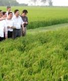 Giáo trình Quản lý nhà nước về phát triển nông thôn
