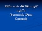Bài giảng Kiểm soát dữ liệu ngữ nghĩa (Semantic Data Control)