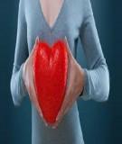 Những con đường dẫn tới bệnh tim mạch mà bạn cần biết