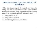 Bài giảng Bảo hiểm đại cương: Chương 1 - TS. Nguyễn Tấn Hoàng
