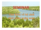 Bài thuyết trình Tìm hiểu về hệ sinh thái rừng ngập mặn