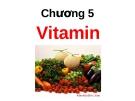 Bài giảng Dinh dưỡng: Chương 5 - GV. Võ Thị Thu Thủy