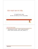 Bài giảng Điện tử tương tự: Chương VI - TS. Nguyễn Quốc Cường
