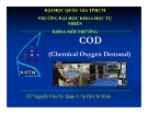Báo cáo: COD (Chemical Oxygen Demand)
