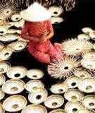 Đánh giá tác động của ô nhiễm môi trường tại các cơ sở sản xuất sản phẩm thủ công mỹ nghệ từ dừa đến sức khỏe người dân tại huyện Châu Thành, tỉnh Bến Tre