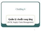 Bài giảng Hệ thống thông tin quản lý: Chương 6 - ThS. Thái Kim Phụng