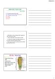 Bài giảng Sinh học đại cương: Chương 7 - GV. Nguyễn Thành Luân