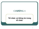 Bài giảng Hệ thống thông tin quản lý: Chương 1 - ThS. Thái Kim Phụng