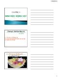 Bài giảng Sinh học đại cương: Chương 4 - GV. Nguyễn Thành Luân