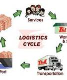 Báo cáo: Giải pháp phát triển các dịch vụ logicstics của các doanh nghiệp Việt Nam