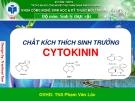 Báo cáo tiểu luận: Chất kích thích sinh trưởng Cytokynin