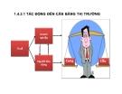 Bài giảng Thuế - Tác động đến cân bằng thị trường