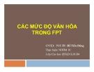 Tiểu luận: Các mức độ văn hóa trong FPT