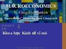 Bài giảng Kinh tế vĩ mô: Chương 1 - N. Gregory Mankiw