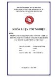 Khóa luận tốt nghiệp: Chiến lược marketing của công ty cổ phần thương mại Nguyễn Kim và kinh nghiệm cho các doanh nghiệp bán lẻ Việt Nam