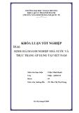 Khóa luận tốt nghiệp: Định giá doanh nghiệp nhà nước và thực trạng áp dụng tại Việt Nam