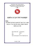Khóa luận tốt nghiệp: Mô hình tập đoàn kinh tế Việt Nam - Hiện trạng và xu hướng phát triển trong thời gian tới