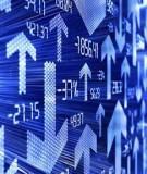 Tiểu luận: Tái cấu trúc thị trường chứng khoán Việt Nam