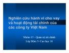 Tiểu luận: Nghiên cứu hành vi cho vay và hoạt động tài chính của các công ty Việt Nam