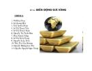 Bài thuyết trình môn học Tài chính quốc tế: Biến động giá vàng