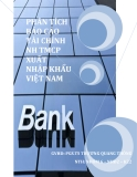 Tiểu luận: Phân tích báo cáo tài chính ngân hàng thương mại cổ phần xuất nhập khẩu Việt Nam