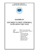 Bài nghiên cứu: Sáp nhập và thâu tóm (M&A) ngân hàng Việt Nam