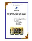 Bài tiểu luận: Xác định các thành phần tạo nên giá trị thương hiệu bia Sapporo