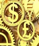 Tiểu luận Tài chính quốc tế: Sự can thiệp vô hiệu hóa, chính sách tiền tệ và hội nhập tài chính quốc tế