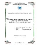 Tiểu luận: Mô hình chứng khoán hóa các khoản cho vay - Thực trạng và khả năng ứng dụng tại Việt Nam