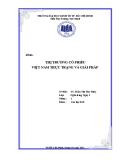 Tiểu luận: Thị trường cổ phiếu Việt Nam thực trạng và giải pháp