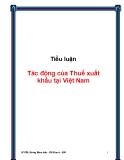Tiểu luận: Tác động của Thuế xuất khẩu tại Việt Nam