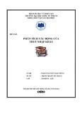 Tiểu luận: Phân tích tác động của thuế nhập khẩu